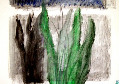 """""""Finestra"""".  1987."""